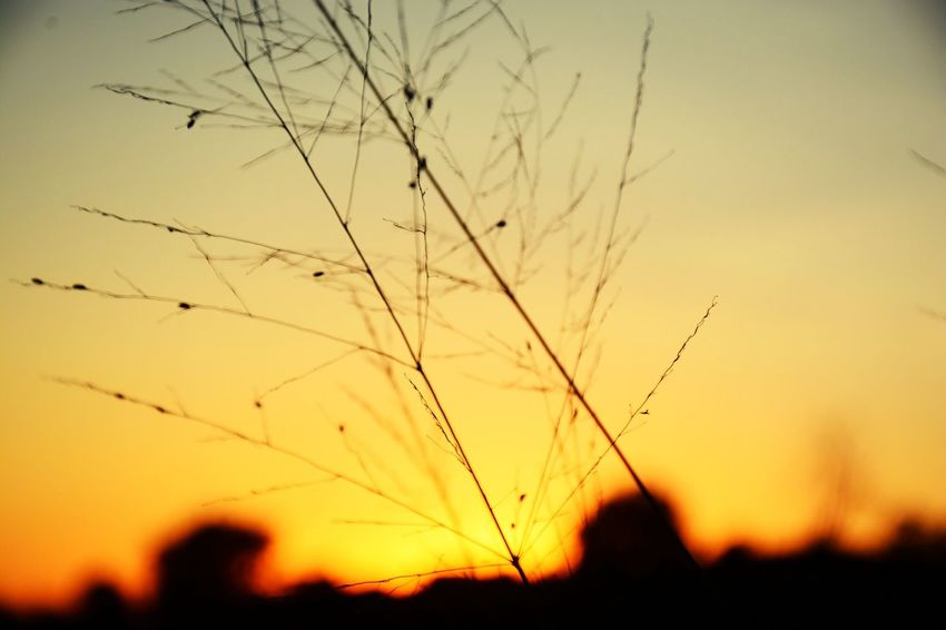 Dont you love sunsets😛📷 Hanging Out Hello World Check This Out That's Me
