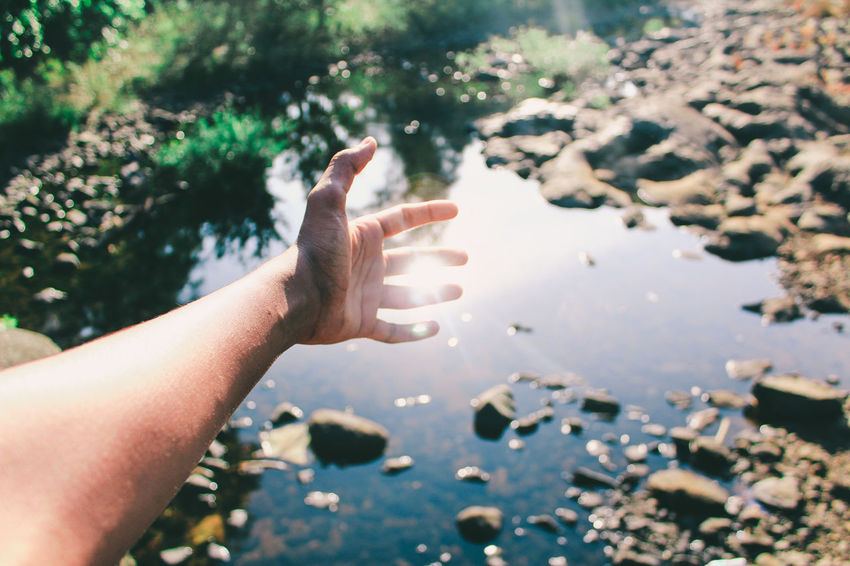 Nature Sunlight Hand Arm Sunlight Warmth Summer Finger Body Part Wrist Human Joint Thumb Joint - Body Part Index Finger Calm Hand Sign Human Finger Autumn Mood This Is Strength