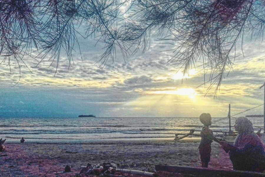 Landscape Beach Nature Water Tree Beauty In Nature Outdoors Scenics Sunset