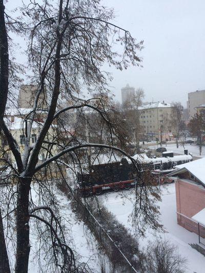 Зима в Кирове😍 Kirov Snow Cold Temperature Tree Winter Architecture Plant Building Exterior City Snowing Day Nature