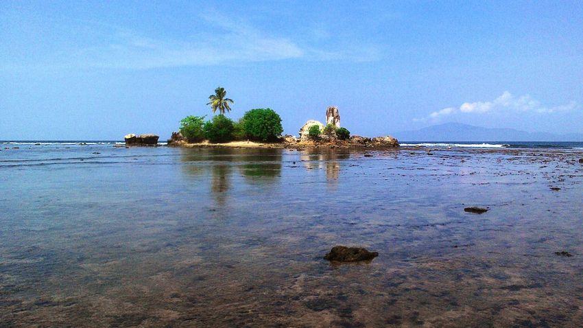 Batu Karang Putih masyarakat setempat menyebutnya Coralisland Coralstone On The Beach Nature Explorelampung WonderfulLampung
