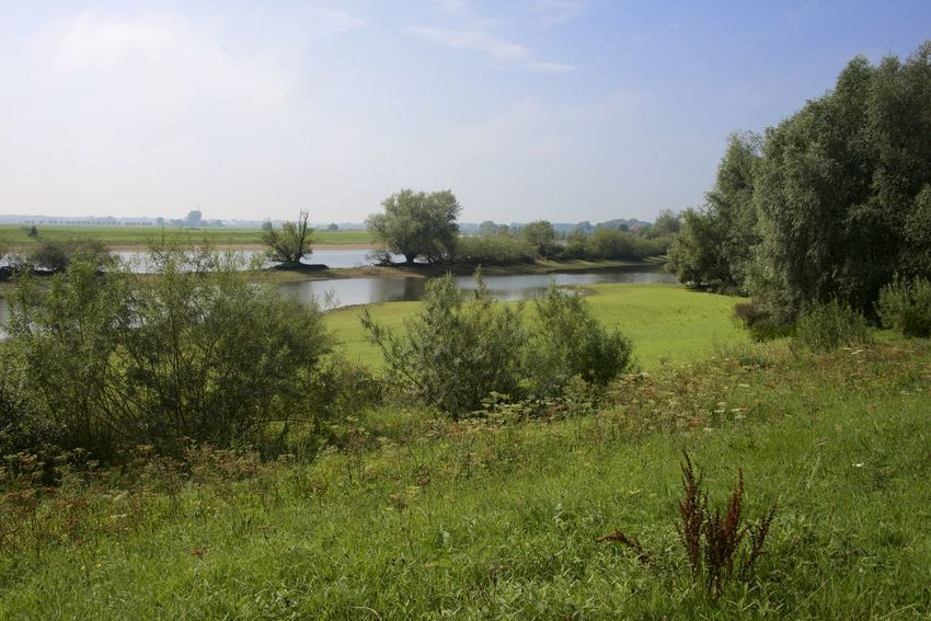 Dutch cycle route 'Rondje Posbank' in Gelderland. Netherlands The Netherlands Canal Dutch Holland Ijssel Outdoors Tranquil Scene Tranquility Water