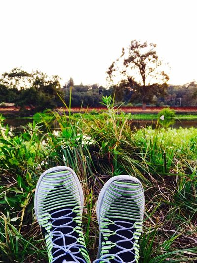 Lake nature Shoe Grass Human Leg Low Section Green Color Nature One Person Human Body Part Day Outdoors People Adult Soccer Shoe Plant Waterfront Water First Eyeem Photo EyeEmNewHere