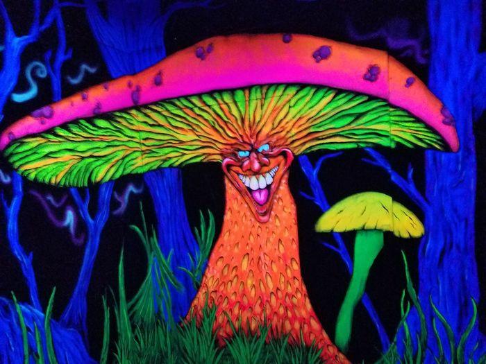 Multi Colored Blacklight♥ Graffiti Art Carnival Rides Silverwood Amusement Park Neon Color