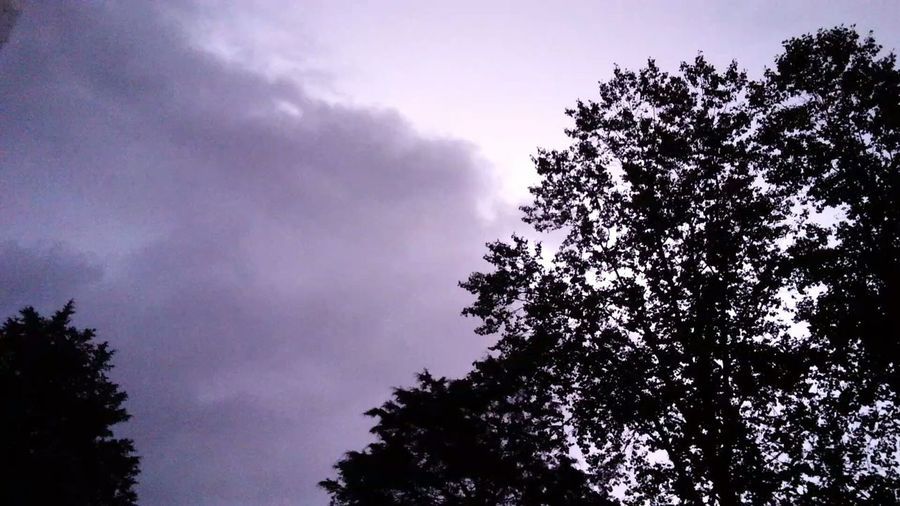 Lightning Behind Clouds Storm Cloud Tree Nature Outdoors Sky Night No People
