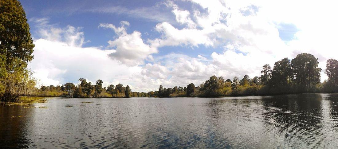 Shing lake Canoeing RiverFrontPark Tampa, FL