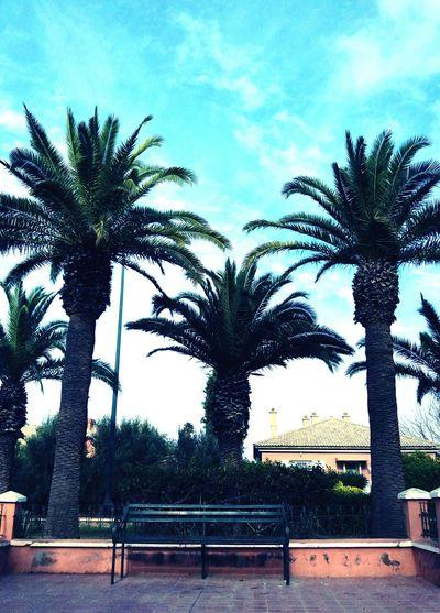 #Instagram #fleurs #insta #Marrakech #photos #menara #good #EyeEm #photographie #image #maroc #FollowMe #Food #EyeEmNewHere #foodphotography #likeforlike #likemyphoto #qlikemyphotos #like4like #likemypic #likeback #ilikeback #10likes #50likes #100likes #20likes #likere #Gorgeous #fotobianconero #flower#garden#nature#ecuador#santodomingoecuador#eyeEmfollowers#iphoneonly#nofiltrer#macro_garden#pretty#beautiful#followme#sho #Goodmorning  #Nature  #JustMe #GoodDay #market #streetphotography #ChurchFlow #photography #outfit #OOTD Food Stories #blackandwhite City