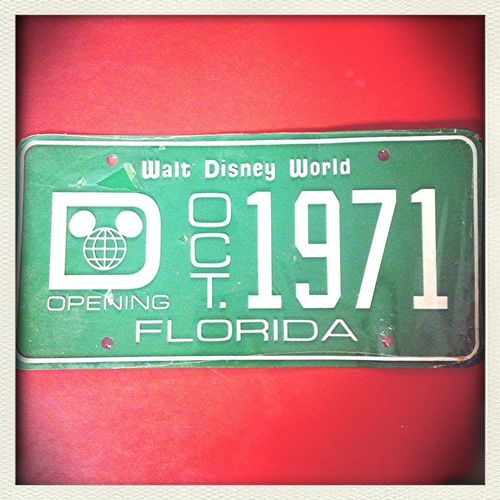 One of the coolest gifts I've ever gotten. Pre-opening license plate for Walt Disney World!