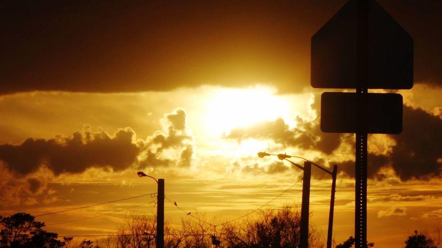 Silhouette street light against orange sky