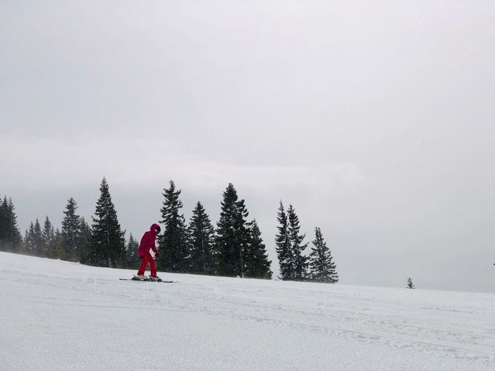 Snow Winter Cold Temperature Tree Winter Sport Real People One Person