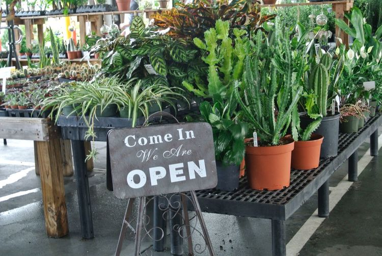 Open for business Plant Text Growth Western Script Potted Plant Nature Day No People Communication Outdoors Barrier Green Color Information Built Structure Architecture Plant Part Sign Leaf Fence Front Or Back Yard