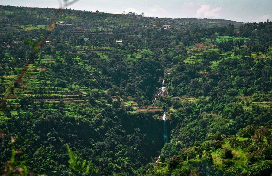 Panchgani, Maharashtra,india Landscape_Collection EyeEm Nature Lover Waterfall_collection Tranquility Nature Nature Beauty In Nature Growth Green Color Landscape Tree Agriculture Outdoors No People Rural Scene Tranquil Scene Tranquility Scenics Day Backgrounds Water Sky Lush - Description