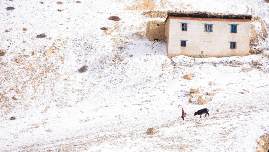Kibber Village,