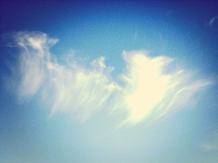 Con la cabeza en las nubes X