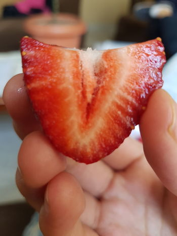EyeEm Selects Food Food And Drink Human Body Part Human Hand One Person Freshness People Healthy Eating Indoors  Lifestyles Close-up Ready-to-eat Day Adult Strawberry