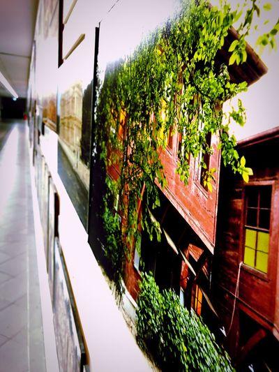 A corridor 🖼 Painting Corridor A New Beginning EyeEmNewHere A New Beginning