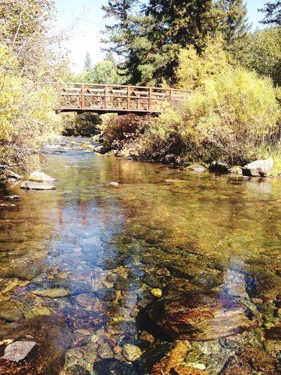 Bridge Water_collection Rocks Waterporn Autumn Colors Fall_collection Enjoying Life Montana EyeEm Nature Lover