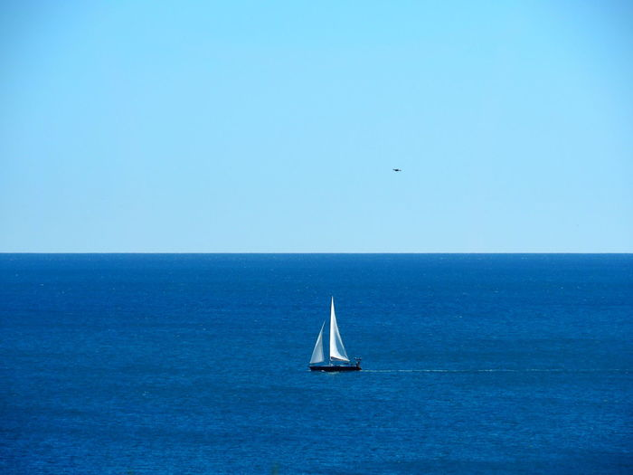 Sailboat sailing in sea against clear blue sky