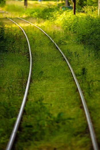High angle view of railroad track amidst trees