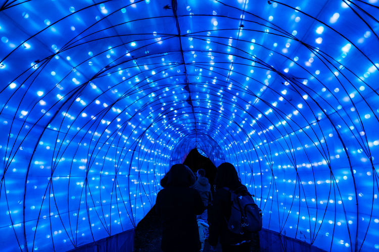 Rear view of people in illuminated tunnel