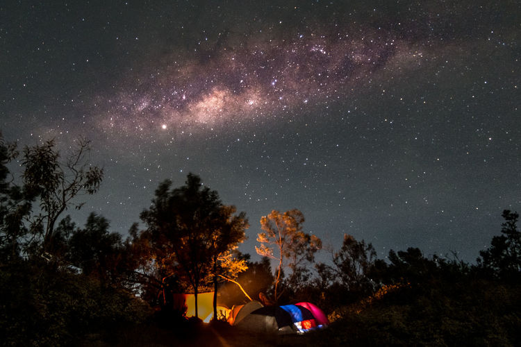 Illuminated tents in forest against star field at night