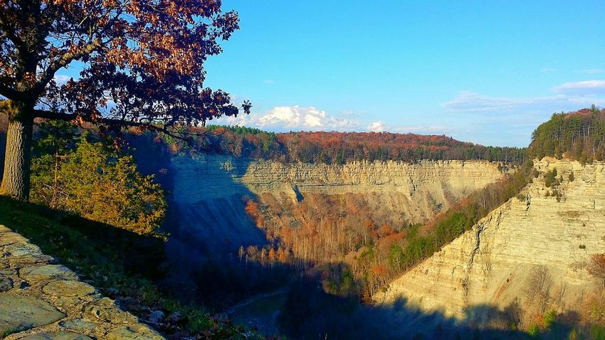 Letchworth State Park Georgeous Gorge Stunning View From My Point Of View View From Up Above Colours Of Autumn
