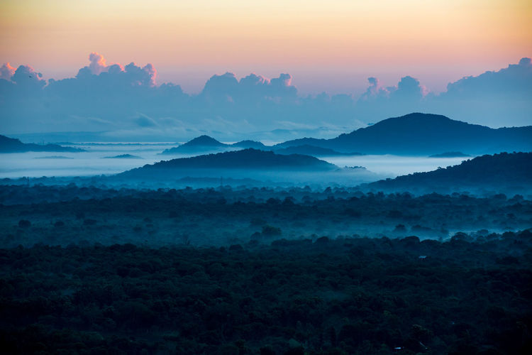 Atmospheric Mood Beauty In Nature Blue Dambulla Day Dramatic Landscape Dramatic Sky Fog Forest Idyllic Landscape Lion Moody Sky Mountain Nature Outdoors Pidurangala Rock Scenics SriLanka Sunrise Sunset Tranquil Scene Travel Destinations Tree