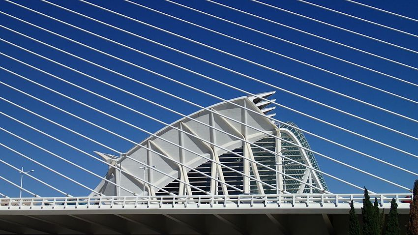 Architecture Built Structure Bridge - Man Made Structure Blue Cable Outdoors Day No People Building Exterior Clear Sky Sky Modern Girder City Hiszpania Walencja Valencia, Spain València Calatrava Santiago Calatrava Bridge Architecture