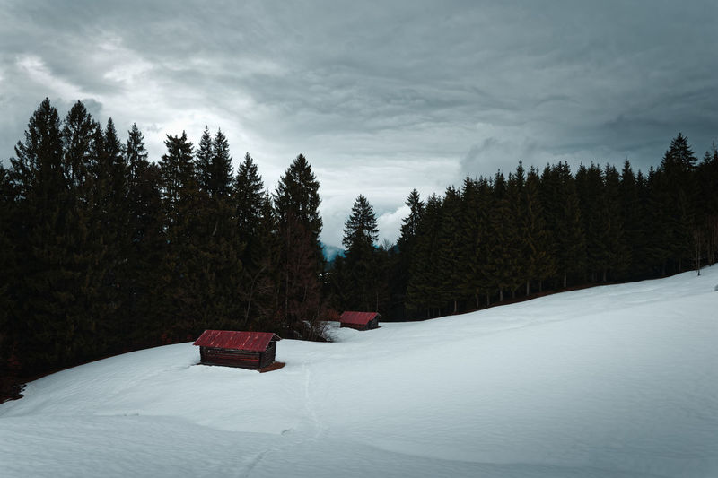 Cabines on a mountain during winter Tree Snow Winter Forest Snowcapped Mountain WoodLand Pine Tree Cottage Cabinet Woods Lonely Lost Mountain Mountains Berge Mountain Range Moody Sky Bavaria Bayern Alpen Alps Germany Vintage