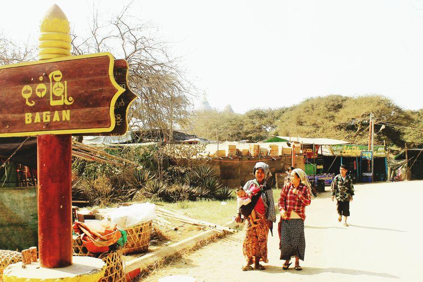 Old City of Bagan Bagan, Myanmar Myanmar Full Length Tree Standing Sky Road Sign Information Sign