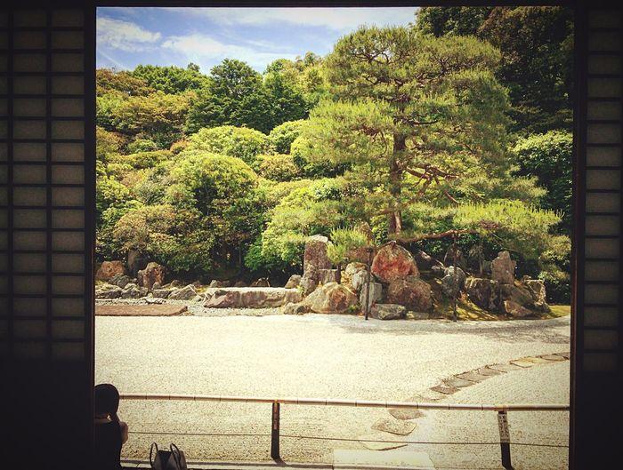 南禅寺 金地院 京都 Relaxing Kyoto Kyotojapan 寺社仏閣