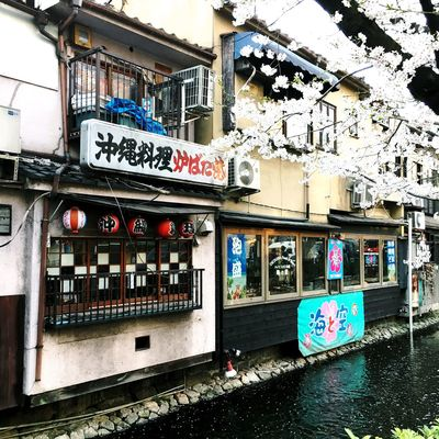 Sakura Architecture Building Building Exterior Built Structure Canal City Communication Day Graffiti No People Non-western Script Outdoors Residential District Script Sign Text Water Western Script Window
