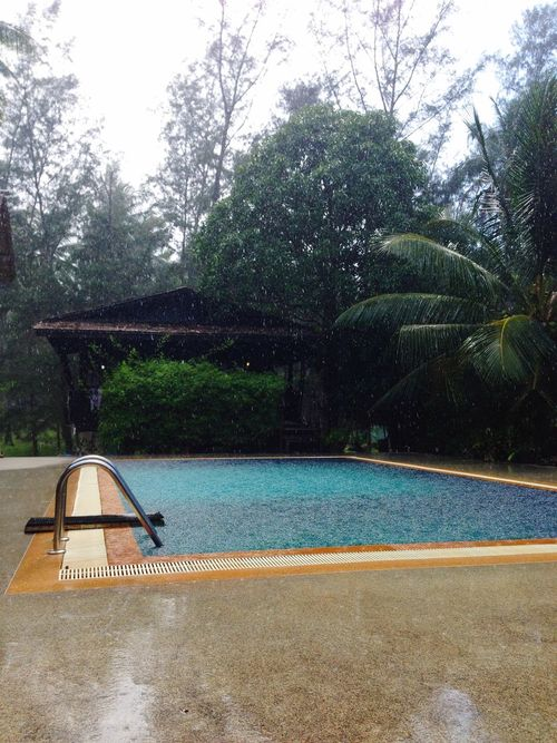 Things I Like A hot, intense, tropical rain storm. What's not to like!? Swimming Pool Empty Monsoon Jungle Storm Palm Trees Heavy Rain Water Koh Phangan Blue Green Square Spotted In Thailand Koh Phangan Chaloklum Blue Wave Telling Stories Differently