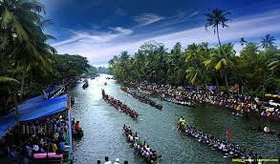 Kerala snake boat race with lot of boats & coconut trees. Outdoors