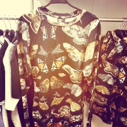 Mottenpulli, ich dreh durch :))) Mothsweater Fashionweek
