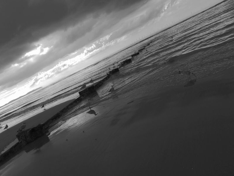 Seascape Seabirds Sea Cloudy Beach Tranquil Scene Brakewater Black & White Dark Black And White Friday