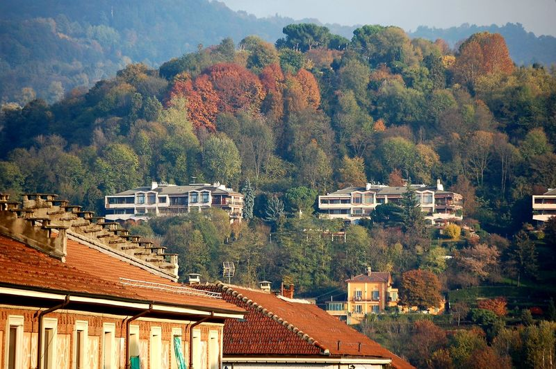 Hillscape Hill Foliage My City Is Beautiful From My Window Nikonphotography Colors Of Autumn Sunlight Perspective Italy Point Of View Nature Beauty In Nature Trees Tree Roof Residential Building House Sky Architecture Building Exterior Built Structure TOWNSCAPE Housing Settlement Town Rooftop Residential Structure Townhouse Place Autumn Mood My Best Photo