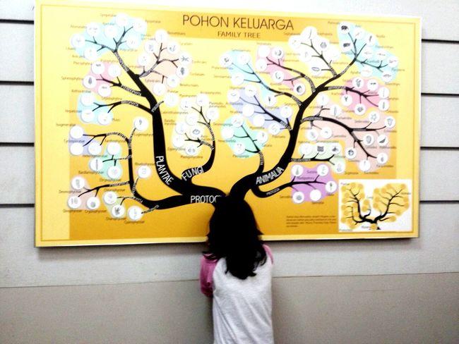Pohon Keluarga Sister Sisterhood Familyties Familytree Harina Imapunya