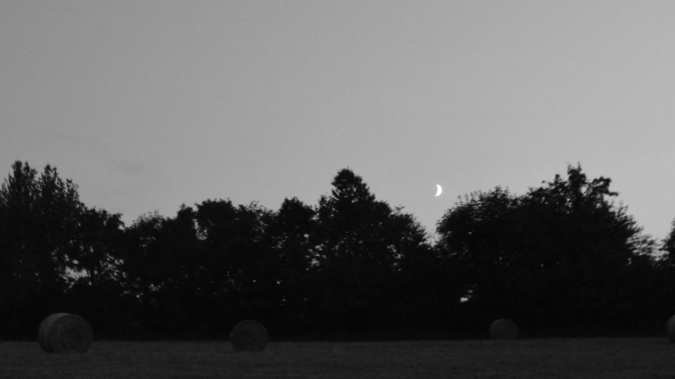 Night Nature Nacht Bale  Full Moon Moonlight Farmland Half Moon