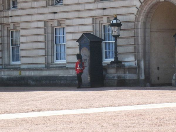 Guards Queen Guard Jobs Built Structure One Person Full Length Adult One Man Only