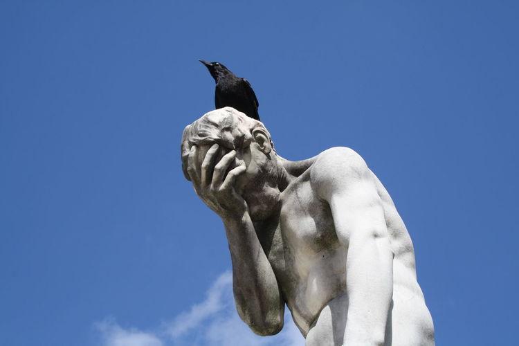 Raven Sitting On Statue Against Blue Sky