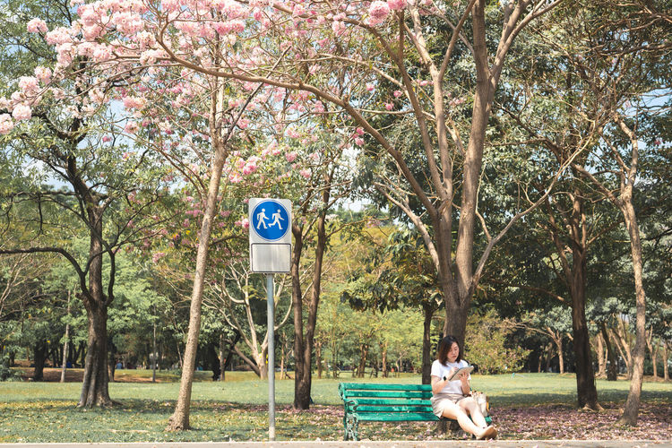Man and woman sitting in park