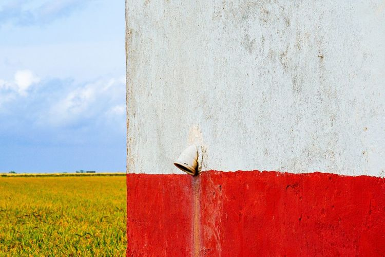 the cross Cross Section Cross Summerscape Collage Wall First Eyeem Photo Eye4photography  White Golden Blue Rice Paddy Rice Field Sky Red Agriculture