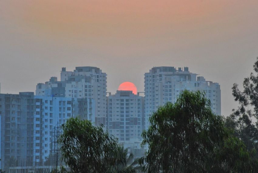 India Bangalore Sunset Golden Hour Concrete Jungle Skyscraper City Urban Skyline Architecture Tree Cityscape Downtown District Outdoors Modern Building Exterior No People Sky Apartment Day Moving Around Rome