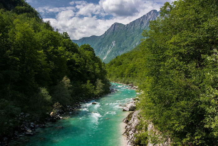 Wild emerald river Beauty In Nature Cloud - Sky Emerald Green Color Landscape Mountain Nature No People No People, River Tree Water Wildlife & Nature