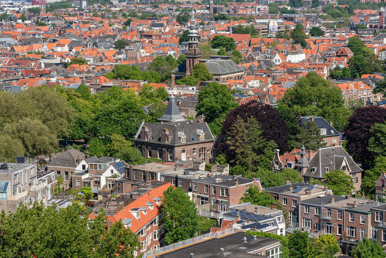 Haarlem cityscape aerial view on a sunny day Architecture Building Exterior Built Structure City Building Tree Residential District Roof High Angle View No People Day Cityscape Town House TOWNSCAPE Outdoors Haarlem Noord Holland Netherlands Sunny Aerial View Holland Urban Landscape Church Residential Building