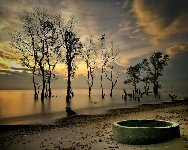 Alone Sunrise_Collection Sunrise_sunsets_aroundworld Sunrise - Dawn Sunrise N Sunsets Worldwide  Sunrise_Collection Landscape Photography Nature Photography Landscape Morning Sky Wonderful Indonesia WeLoveBalikpapan Sunsetlover Balikpapan City Sunriseporn Teritip Pantai Serumpun Balikpapan Balikpapan Landscaper Nature Sunrise Photography Water Tree Silhouette Reflection Sky Grass Cloud - Sky Horizon Over Water Ocean Seascape Beach