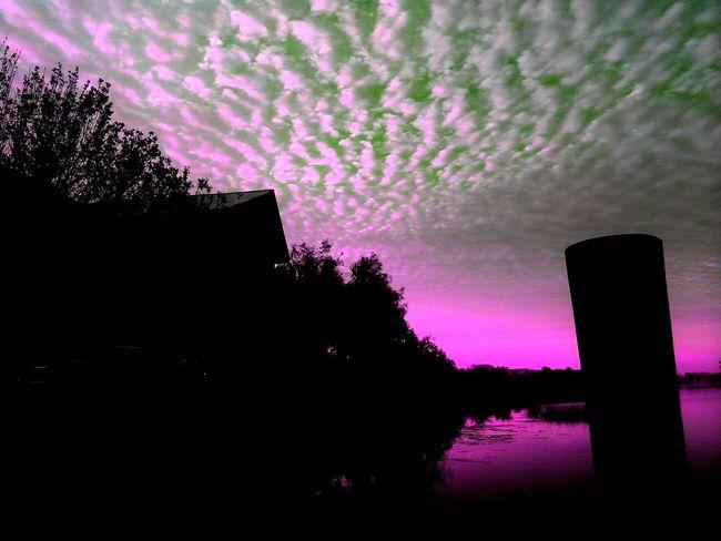 Morning light on Bass Pro lake.