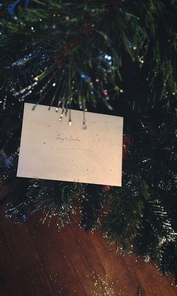 ... all that Glitter ... Christmas Tree Glitter & Sparkle Holiday Holidays Holiday Cheer Tree Plastic Tree Artificial Tree New Year Celebration ёлка новыйгод С Новым Годом праздник блестки письмо Letter Greetings Card