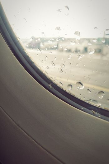 Todesfalle Trapped Trap Death Animal Fly Moskito Airplane Water Commercial Airplane Air Vehicle Full Frame Window Drop Close-up Sky Travel Rainy Season RainDrop Airport Runway Transparent Rain Airfield